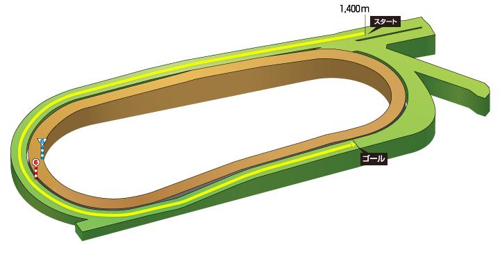 2019年 第33回ファルコンステークス コース特徴