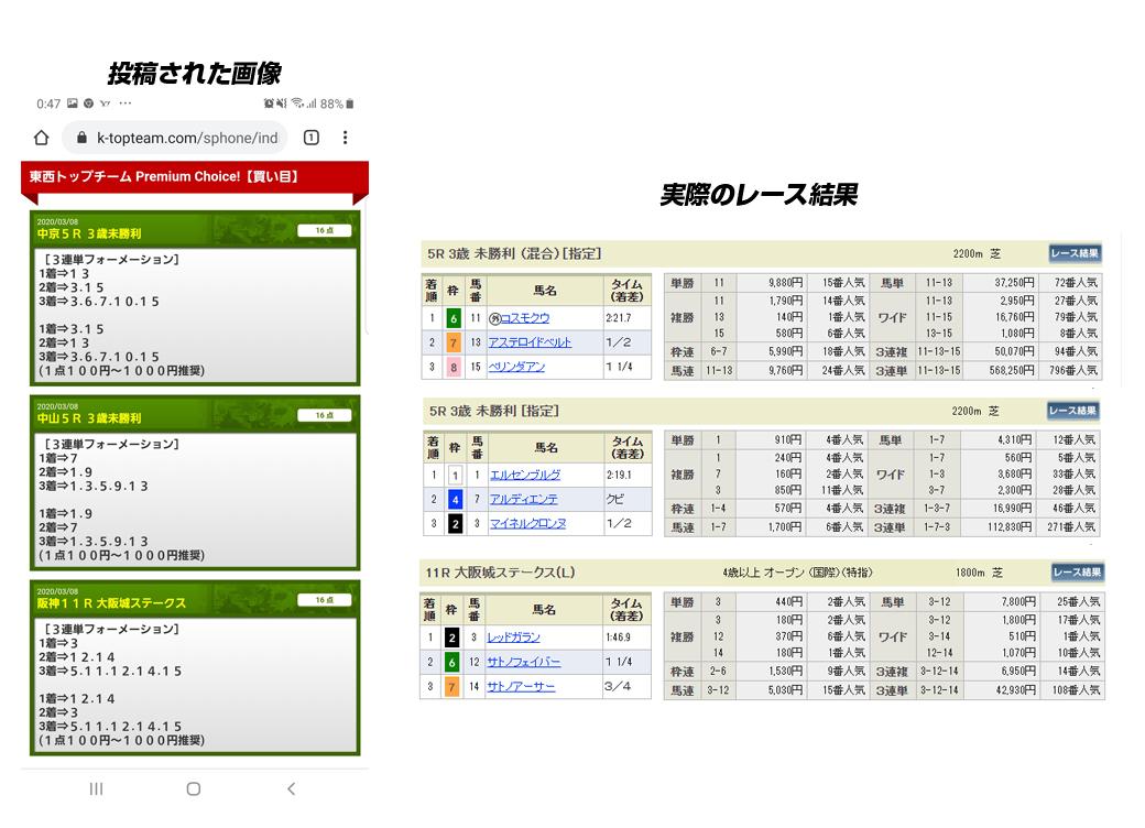 競馬トップチーム 的中実績 検証