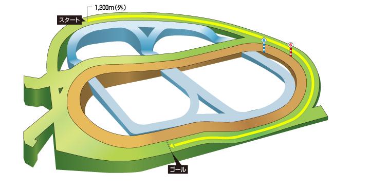2019年 第53回スプリンターズステークス コース特徴
