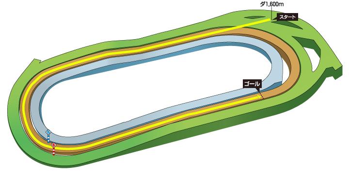 2019年 第36回フェブラリーステークス コース特徴