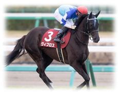2018年 第158回天皇賞・秋(GⅠ) 穴馬予想