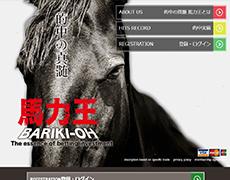的中の真髄・馬力王(BARIKI-OH) 検証