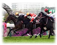 阪神牝馬ステークス 特徴