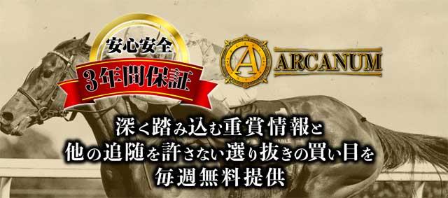 ARCANUM サイト 検証